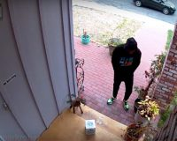 VIDEO: The Fake Package This Inventor Creates To Deter Thieves Is Absolutely Brilliant