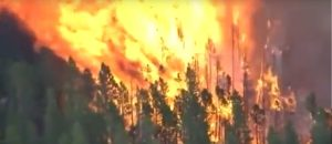 Illegal Alien Charged with Dozens of Forest Fires in Colorado